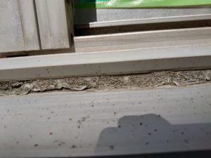 窓回りにあるシーリング